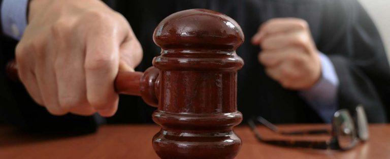 Elnézőbbek a bírók az állatkínzókkal, mint a jegyzők