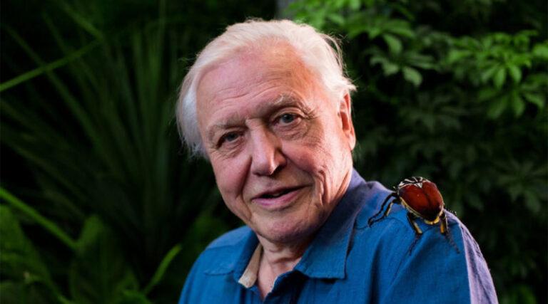 Új sorozattal jelentkezik a földről David Attenborough (videó)