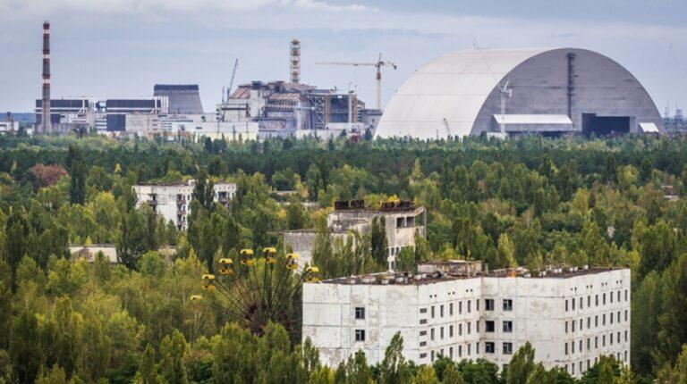 Különös, egyre szaporodó gombát találtak a csernobili atomerőműben