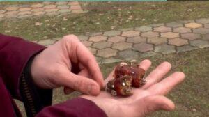 Szögekkel teli kolbászok miatt kellett megműteni egy kutyát Debrecenben (Videó)