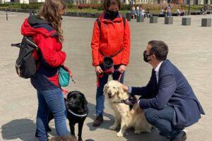 Terápiás kutyákat kiképző szervezeteknek nyílt pályázati lehetőség