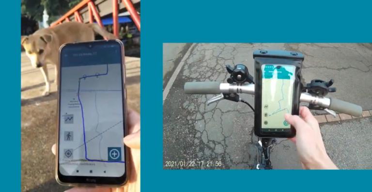 Állatvédők figyelmébe: megjelent a kóbor kutyák számlálására alkalmas mobil applikáció