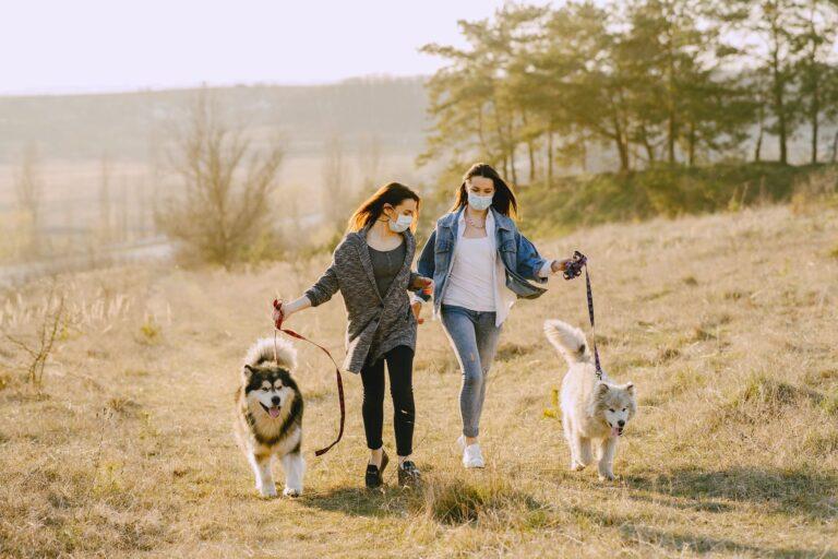 A kutyák segíthetnek elűzni a koronavírus okozta depressziót