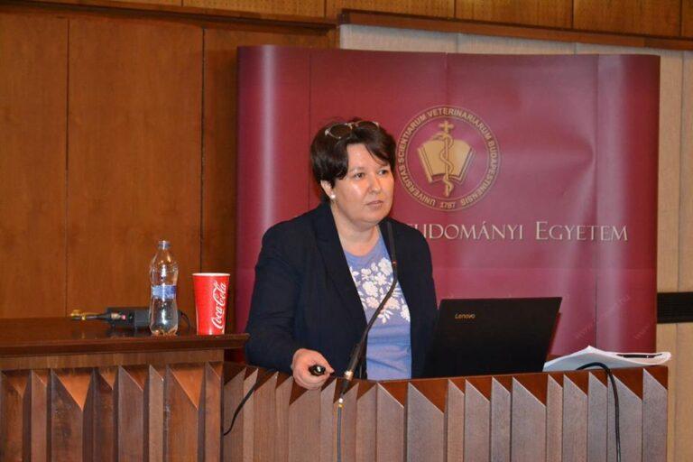Dr. Kajó Cecília: A hatóságok nagyobb büntetéseket szabnak ki az állatkínzókra, mint a bíróságok