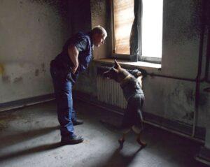 Négylábú munkatársaikkal gyakorlatoztak a Nógrád és Heves megyei rendőrök (Videó)