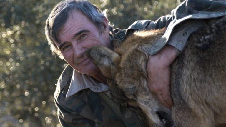 A férfi, akit farkasok neveltek fel a vadonban