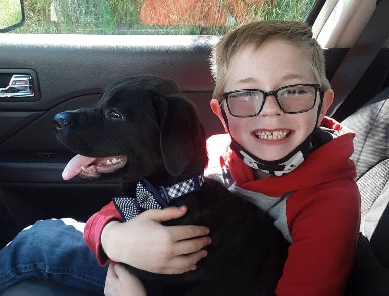 Kutyája életét akarta menteni a kisfiú: eladta legkedvencebb dolgait, hogy fedezze a kezelést