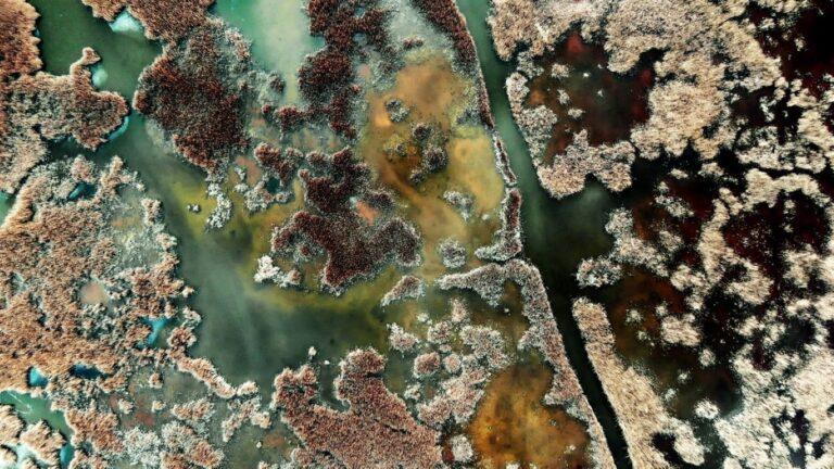 Gyönyörű természetfilm készült Magyarország vizeiről – VIDEÓVAL