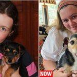 Tizenegy év után került elő egy brit család elveszett kutyája