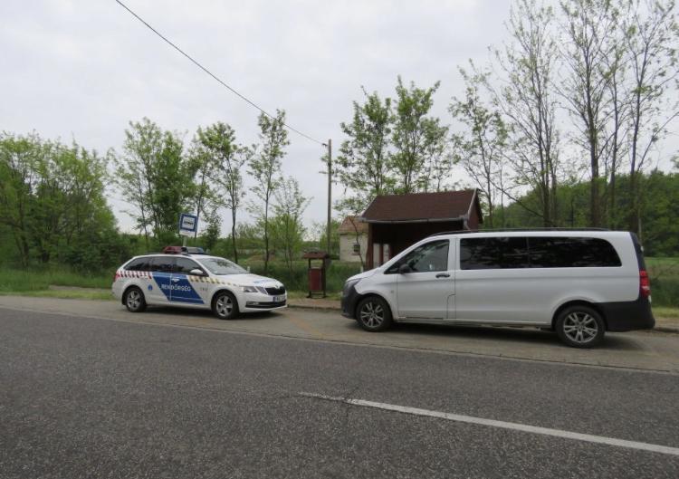 6 kölyökkutyát hagyott egy szemetesben, az ügyészség hamarosan vádat emelhet