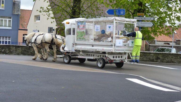 Kukásautó helyett lovaskocsikkal gyűjtik a lakossági hulladékot