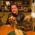 Arnold Schwarzenegger is nagy állatbarát!