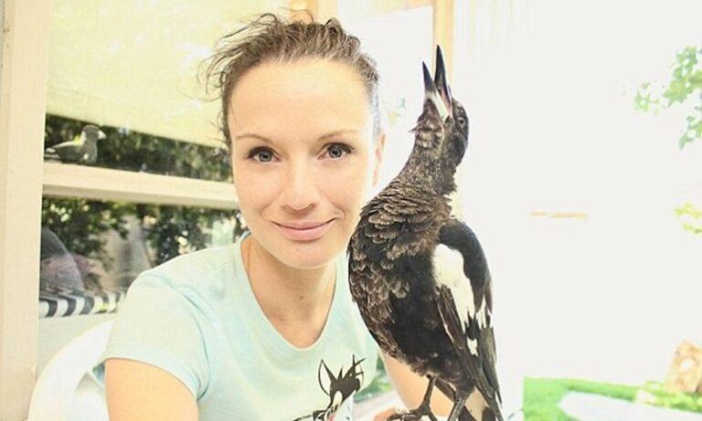 Szarkákkal suttogó: a vadgondozó vállára ülnek, játszani hívják őt a madarak – VIDEÓVAL