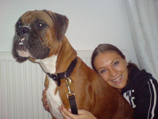 25 millió forintért klónoztatták elhunyt kutyájukat, mert hiányzott nekik